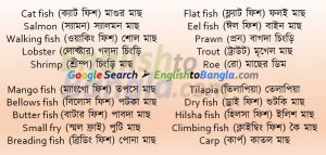 Commonly used words Fish