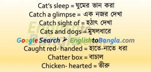 Idioms & Phrases Lesson 45